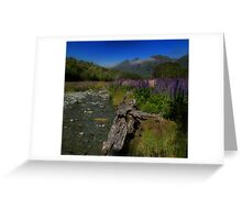 What Do You Say When Purple Fields Of Fiordland Smile At You? Greeting Card