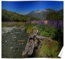 What Do You Say When Purple Fields Of Fiordland Smile At You? Poster