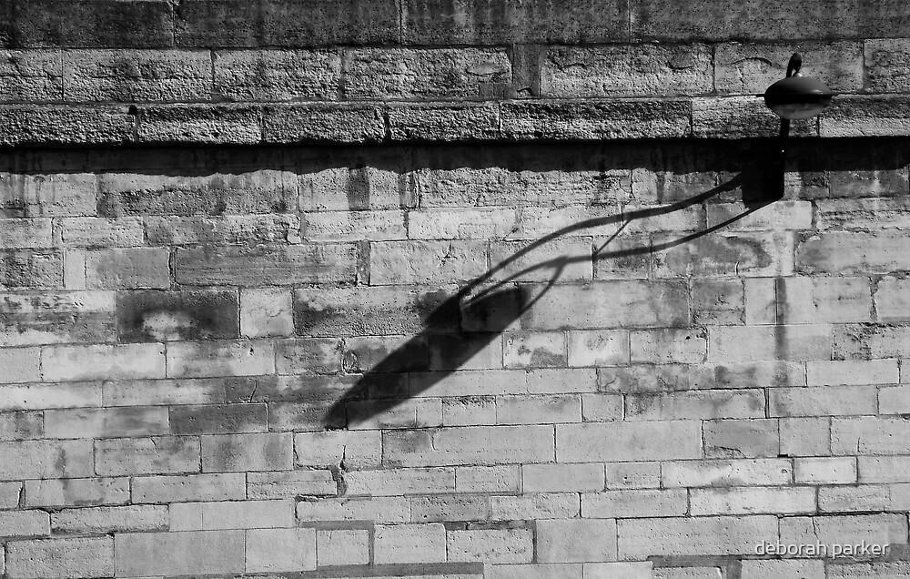 light & shadow by deborah parker