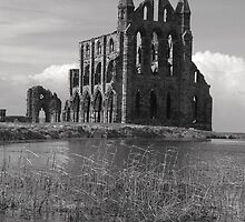 Whitby Abbey iii by JoLennox