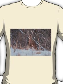 White Tailed Deer T-Shirt