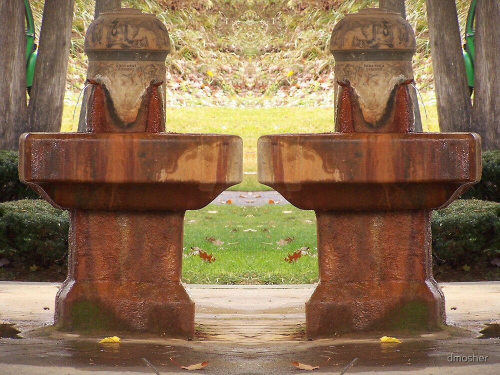 Healing Mineral Waters by dmosher