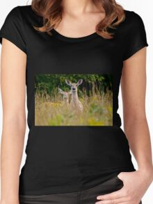 White Tailed Deer in Grass - Ottawa, Ontario Women's Fitted Scoop T-Shirt