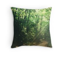 Two Track Throw Pillow
