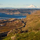 Mount Hood and the Columbia River by Bryan Peterson