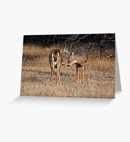 Faceoff Greeting Card