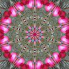 Ornamental by Monnie Ryan