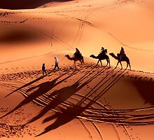 Sand Dunes by john0