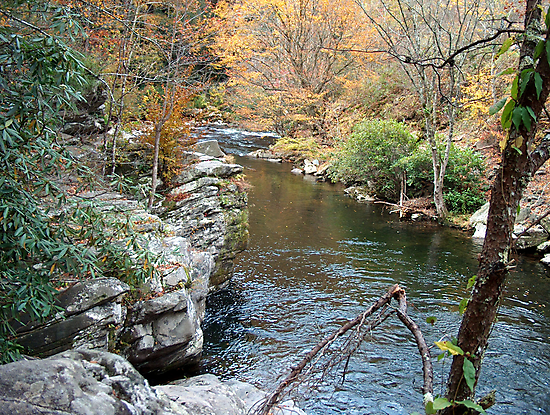 FALL MOUNTAIN STREAM by Danny Close