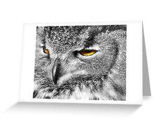 eagle eyes 2008 Greeting Card