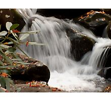 Mountain Stream in the Smokys Photographic Print