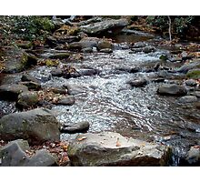 Mountain Fall Colors and Stream Photographic Print
