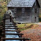 Mingus Mill in the Fall by Danny Close