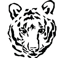 Tiger Black and White Photographic Print