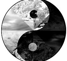 Ying Yang by MarcoD