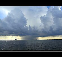 Florida Power vs. Mother Nature by George  Link