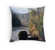 Salt Creek Beach and Sea Stack Throw Pillow