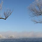 River Fog pano by Shell59