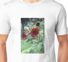 Orange Rusty Sun Flowers  Unisex T-Shirt