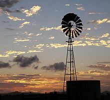 Days End, Central Queensland by Lisa Evans