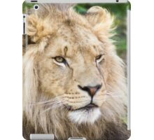 122014 lion iPad Case/Skin