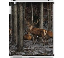Elk in the Forest iPad Case/Skin