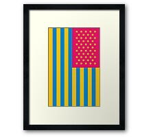 Neon Nations USA Framed Print