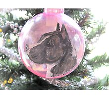 My Favorite Christmas Bulb Photographic Print