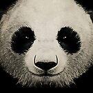 panda eyes 02 by vinpez