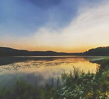 Sunset At The Lake by Sharon Norman