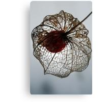 Flowerweb Canvas Print