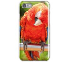 Posing for pictures iPhone Case/Skin