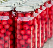 Preserves by Linda Lees