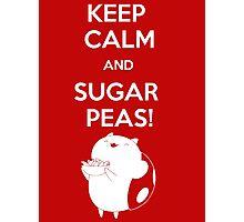 Keep Calm and Catbug On! Photographic Print