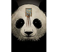 Panda window cleaner 03 Photographic Print