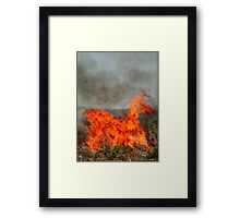 The Fiery Horse of the Apocalypse. Framed Print