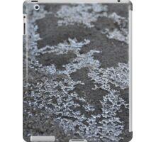 ice crystals on sand iPad Case/Skin