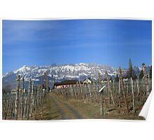 Alpine Wine Poster