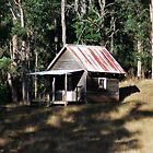 The shack, Noojee by Tamara Bush