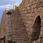 The Stairs at the Fort by Anthony Vella