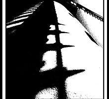 Blades in black and white by ragman