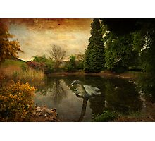 Nessie Photographic Print