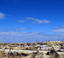 Sand and Sky by Steve Keefer