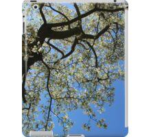 Blossoming white magnolia tree against blue sky in spring iPad Case/Skin