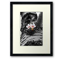 Flower and Tree Framed Print
