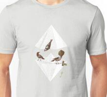 Guardian of Secrets Unisex T-Shirt