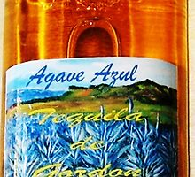 Agave Azul Tequila De Gordon'...One Full Quart by WhiteDove Studio kj gordon