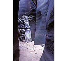 Slot Canyon Photographic Print