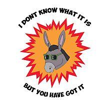 Awesome Donkey Photographic Print