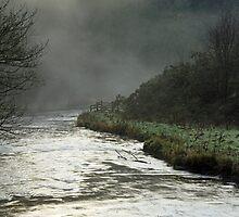 Misty River, Wolfscote Dale by Rod Johnson